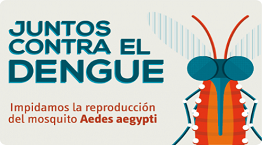prevencion del dengue